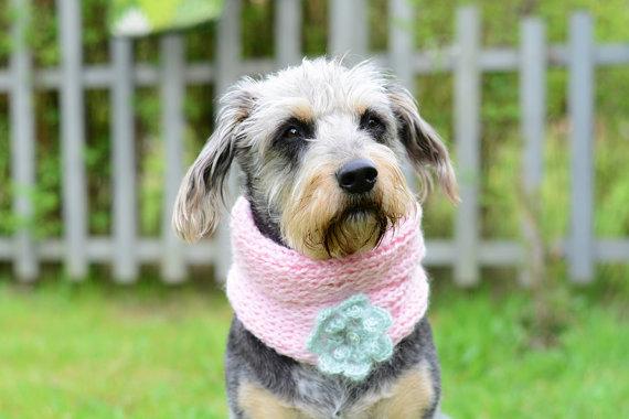 Свадьба - Dog neckwarmer with bow, wedding ellegance, hand crocheted, pet accessories, clothing, ellegant pet, pink mint