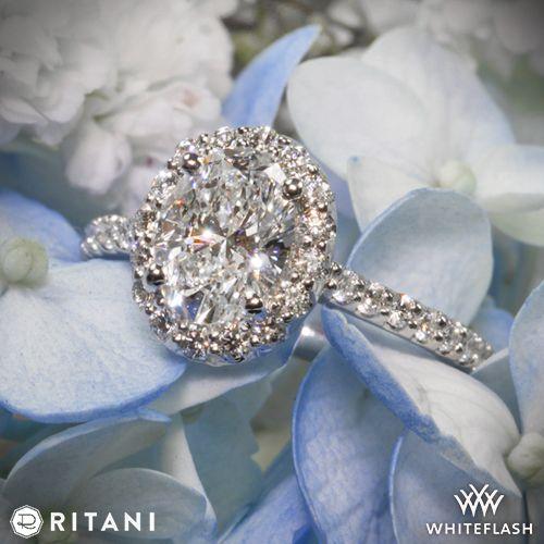 زفاف - Platinum Ritani 1RZ1321 French-Set Cushion Halo Diamond Band Engagement Ring