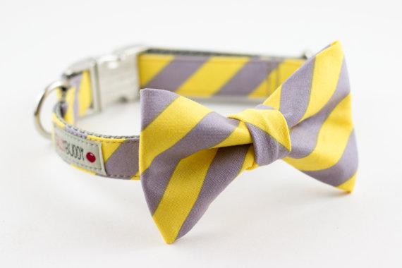 Свадьба - Yellow Grey Stripe Bowtie Dog Collar with Nickel Buckle