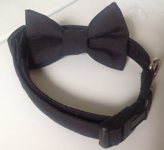 Свадьба - Black Wedding and Formal Wear Dog or Cat Collar with Available Matching Bow Tie