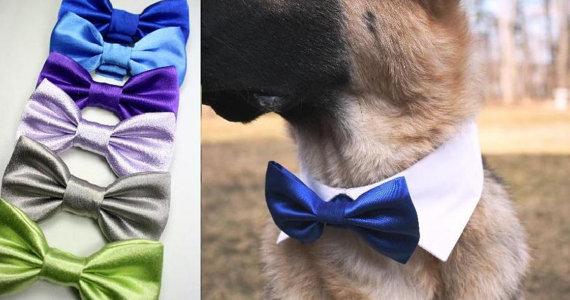 Свадьба - Dog Wedding Pointed Shirt Collar with Satin Bow Tie Cat Wedding Collar Bowtie White Violet Blue Platinum Bow Tie Formal Adjustable