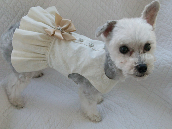 Свадьба - Wedding Dog  Dress  Harness for Dog or Cat Outfit
