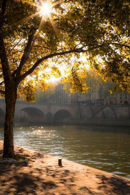 Wedding - Fantastical France