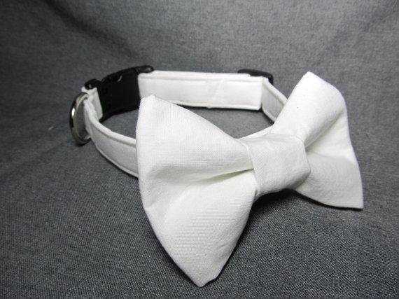 زفاف - Designer Dog Collar - White Dog Collar and Bowtie - Wedding dog collar, bow tie dog collar