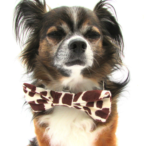 Свадьба - Pet Dog Bowtie- Clip On- Giraffe Print-Size Large