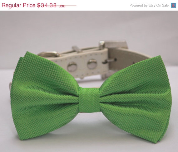 Свадьба - Green Dog Bow Tie - with high quality leather collar, Spring wedding dog accessory, emerald green