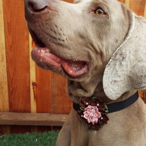زفاف - Brown & Pink Flower Dog Collar Accessory for Cats and Dogs - Great Wedding Accessory for your pet!
