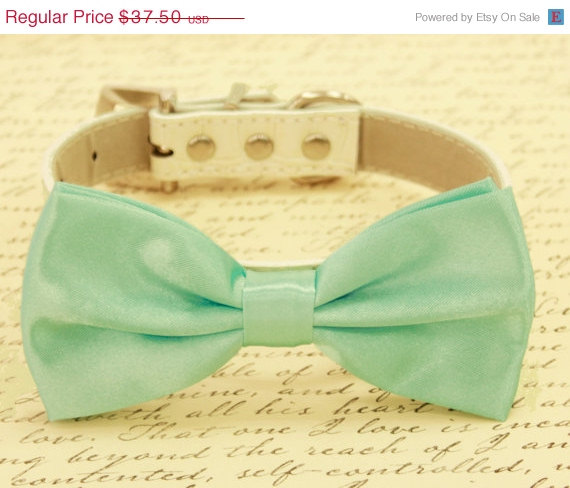 Свадьба - Aqua Mint bow tie attached to leather dog collar, Chic Dog Bow tie, Pet Wedding Accessories, 2015 Wedding Accessories, Aqua Mint Wedding
