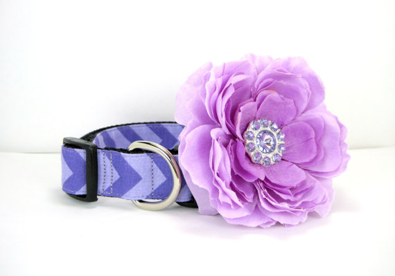 Свадьба - Purple Chevron Dog Collar with Rhinestone flower set  (Mini,X-Small,Small,Medium ,Large or X-Large Size)- Adjustable