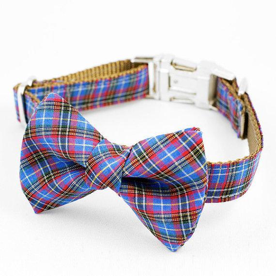 Свадьба - Bow Tie Dog Collar - Blue Tartan