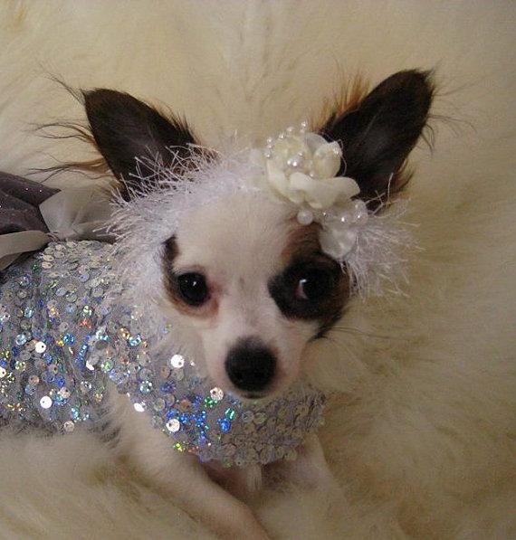 Свадьба - NEW - Wedding bridal Headband for Pet - 2 to 20 lb dog or cat