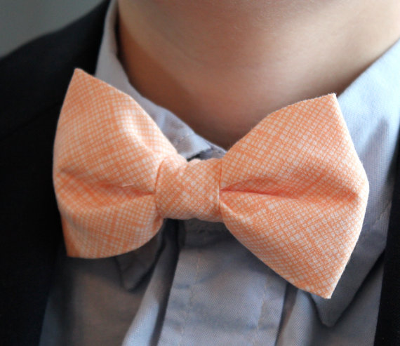 Mariage - Bow Tie in Peach Hatch - clip on - ring bearer attire, groomsmen accessories or gifts
