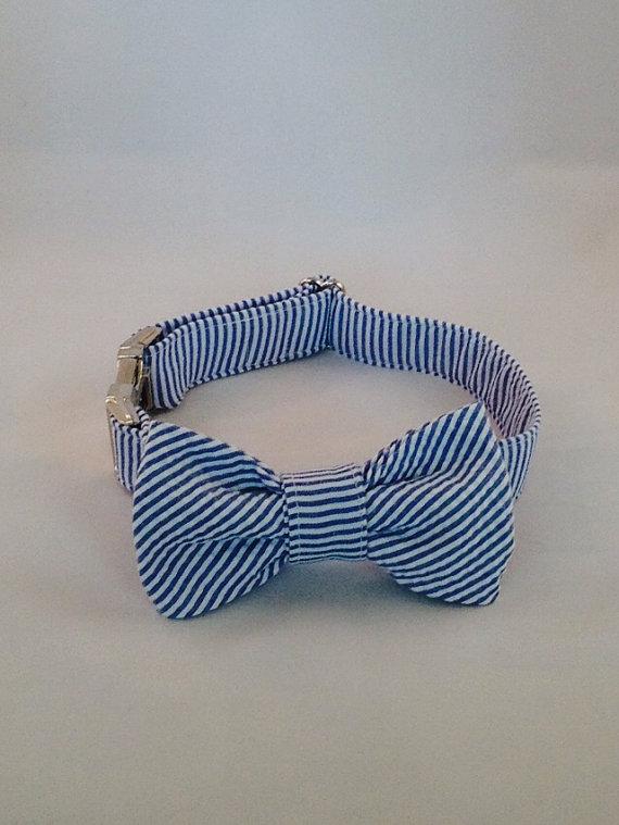 زفاف - Preppy Navy Blue Seersucker Bow Tie Dog Collar, Seersucker Bowtie Dog Collar, Custom Dog Collar, Preppy Dog Collar, Navy Dog Collar,