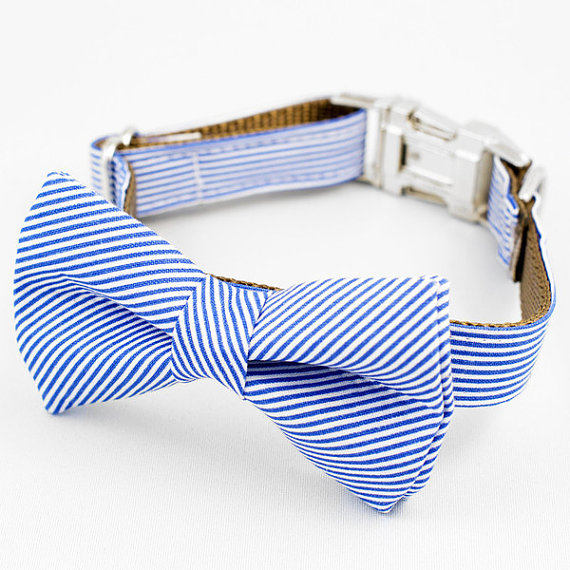 Свадьба - Bow Tie Dog Collar - Blue and White Stripe