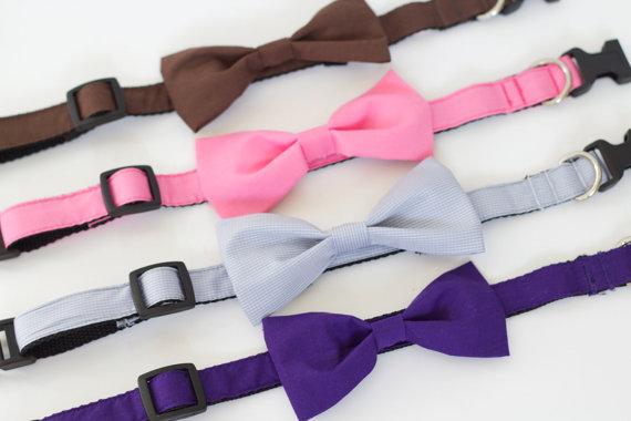 زفاف - SUPER SALE!  9 colors to choose from, UsagiTeam designer dog collars with bowties Brown, Pink Purple, Sky Blue, Mint or Beige Polkadot