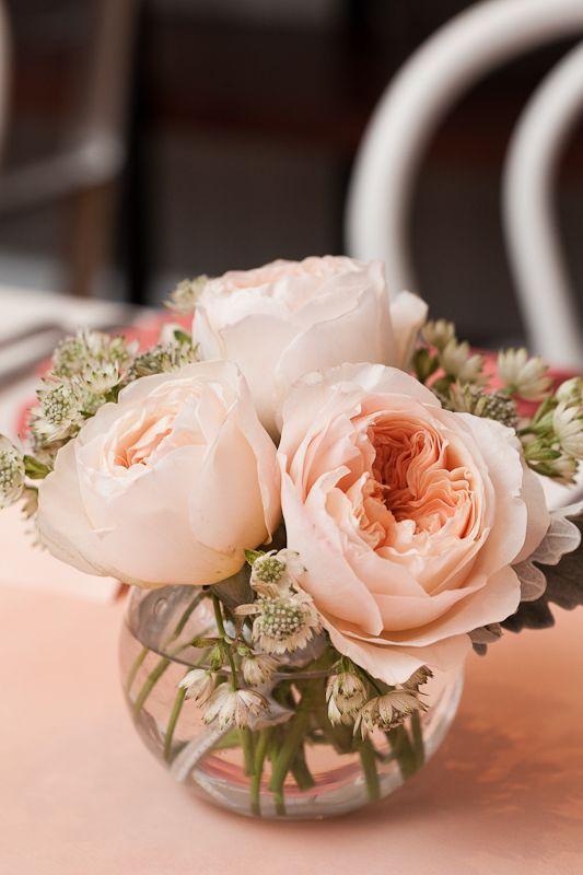 Wedding - Minted Weddings Brunch
