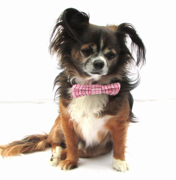 Свадьба - Dog Bow tie-Clip on-Pink and Red and White Plaid-Size small