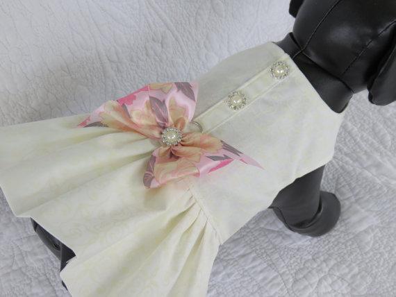 زفاف - Wedding Dog  Dress  Harness for Dog or Cat Outfit