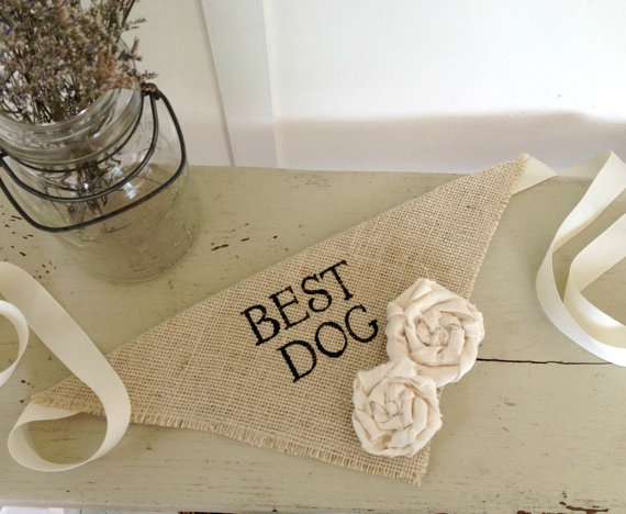 Свадьба - Ivory Best Dog Girl Collar with Flowers Bandana Rustic Burlap Wedding Photo Prop
