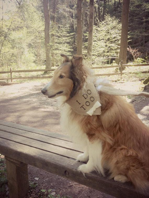 Свадьба - Dog Bandana I Do Too Natural Burlap Wedding Collar Boy Bowtie