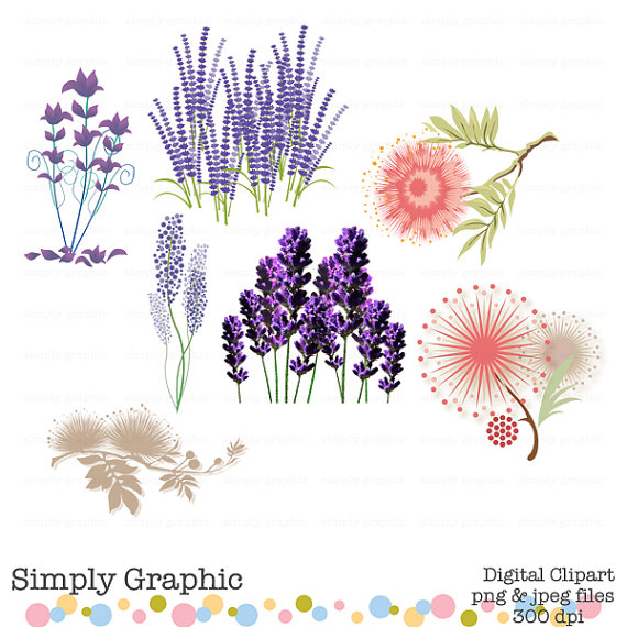 Mariage - Lavender, Wedding, Bouquet, Plant, Purple Flower Clipart, Digital Flower, Pink Flower, Silk Tree, Instant Download, Digital Graphics c145
