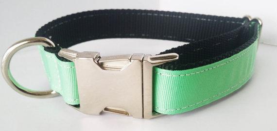Wedding - Mint Dog Collar