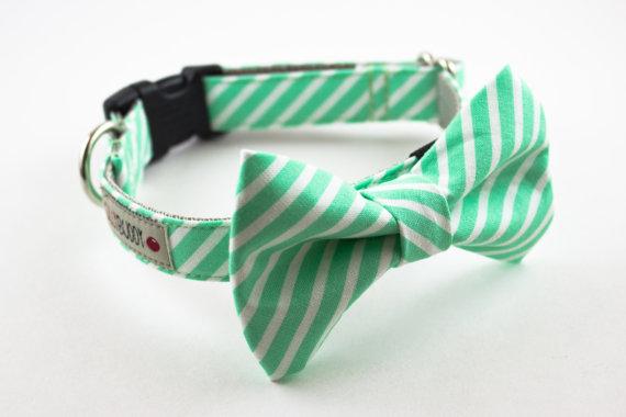 زفاف - Mint Stripes Dog Bow Tie Collar