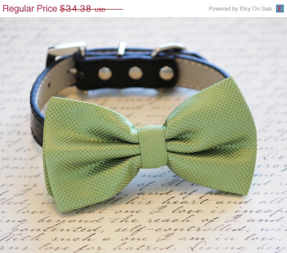 Свадьба - Grass Green Dog Bow tie with High Quality Black Leather Collar, Spring wedding dog accessory