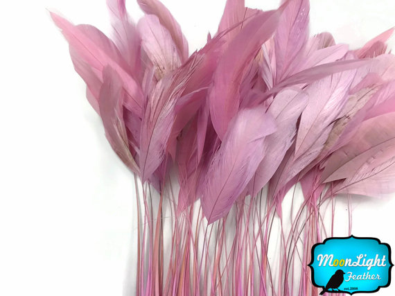 Mariage - Stripped Rooster Feathers, 1 Dozen - LIGHT PINK Stripped Coque Tail Feathers : 3899