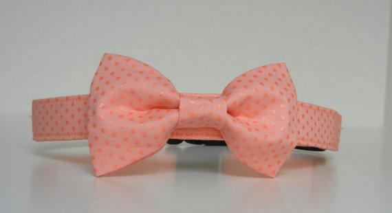 Свадьба - Coral Peach Metallic Polka Dot Bow Tie Dog Collar Wedding Accessories Made to Order