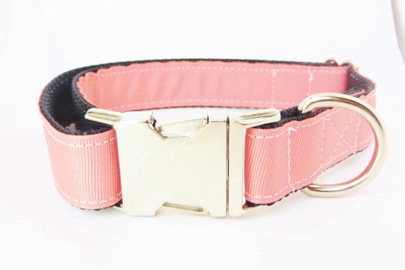 Свадьба - Coral Dog Collar