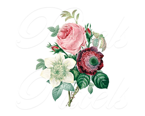 Wedding - ROSES ANEMONE bouquet Instant Download, Wedding Images, Large Digital Image, pink clipart digital Redoute 131