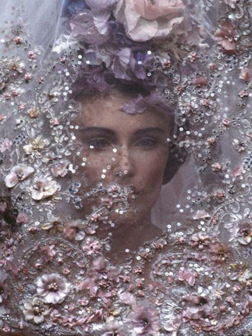 زفاف - Belles Images !!!