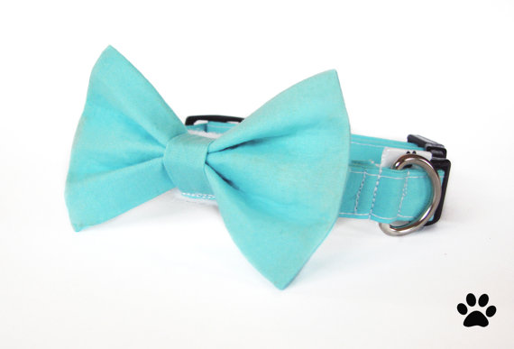 Свадьба - Aqua blue - cat and dog bow tie collar set, aqua dog bow tie collar set, blue cat bow tie collar set, aqua cat collar, dog wedding bow tie