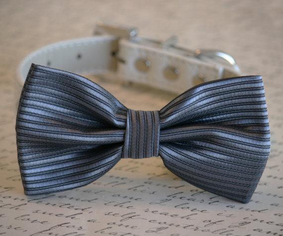 Свадьба - Charcoal wedding, Charcoal Dog Bow Tie, Pet Wedding accessory, Charcoal wedding idea, Dog Bow tie, Pet accessory