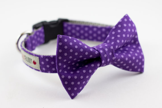 زفاف - Purple Polka Dot Bowtie Dog Collar