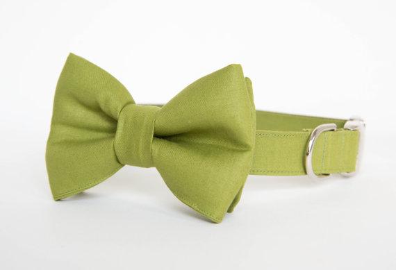 زفاف - Dog Bow Tie Collar - Okra Green Gentleman's Collar
