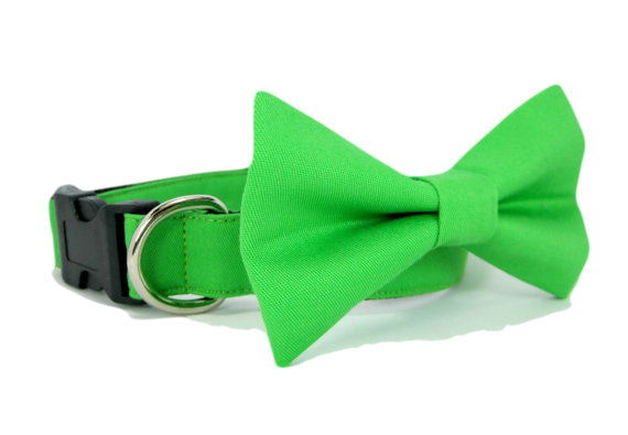 زفاف - Wedding dog collar-Green  Dog Collar with bow tie set  (Mini,X-Small,Small,Medium ,Large or X-Large Size)- Adjustable
