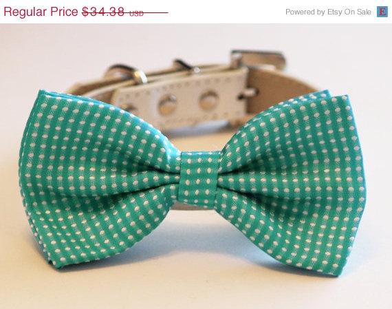 Свадьба - Blue Dog Bow Tie - Cute Blue Dog Bow tie- -Something blue, Pet wedding accessory, Blue dog bow tie, Polka dots bow, Dog Lovers, Dog Birthday