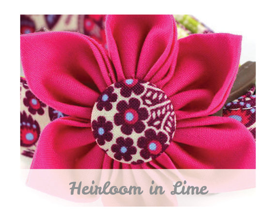 زفاف - Pink Dog Collar Flower - Heirloom in Lime