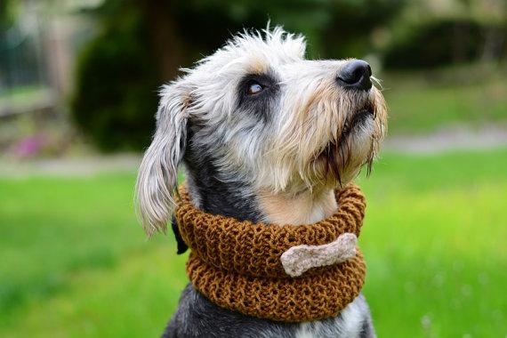 Свадьба - Dog neckwarmer with bone, hand crocheted, pet accessories, clothing, ellegant pet, mustard brown