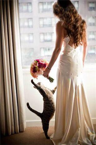 Свадьба - Someday My Prince Will Come...