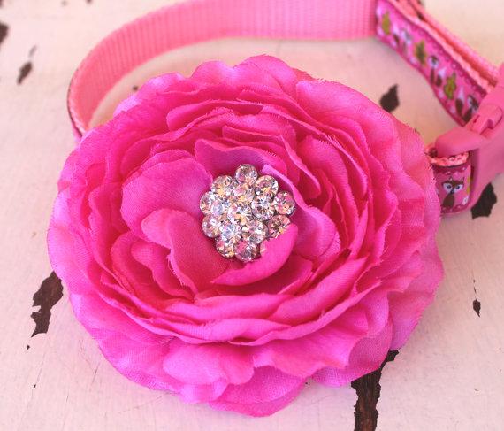 Свадьба - Fuschia Pink Cottage Rose Dog Collar Add On / Bright Pink Dog Collar Accessory / Special Occasion Flower / Rhinestone Center