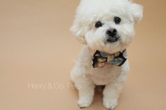 زفاف - Dog bow tie and shirt collar- globe print bow tie and gingham shirt collar- formal wear for dogs