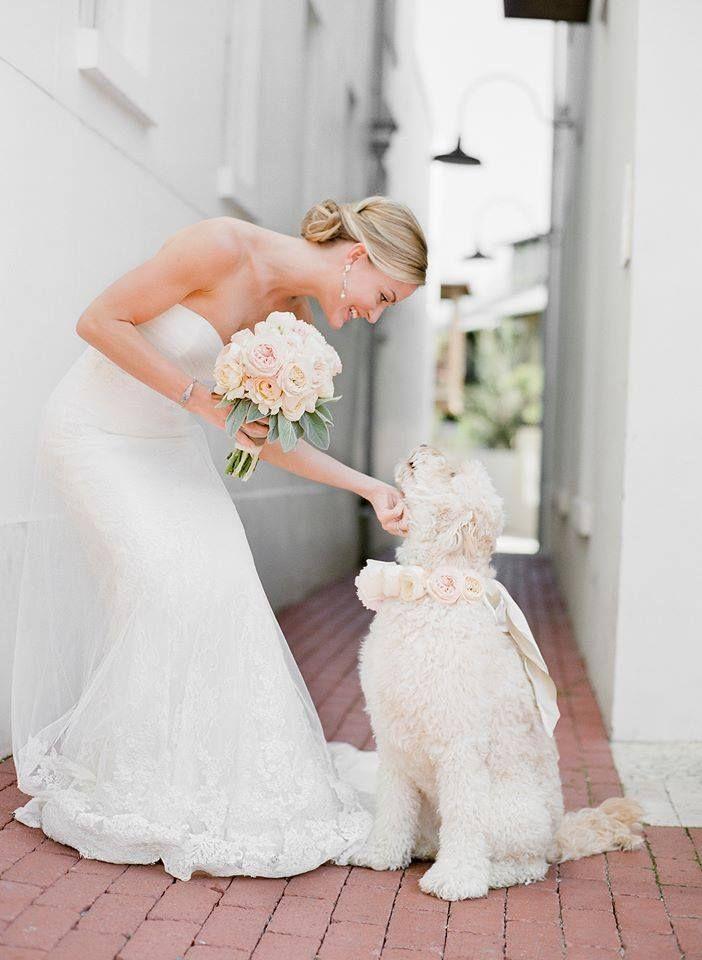 Свадьба - A Wedding To Remember