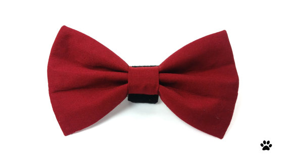زفاف - Burgundy wine red - cat bow tie, dog bow tie, pet bow tie