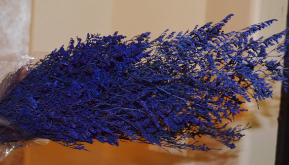 Свадьба - Preserved Gorgeous Deep Blue Caspia for Dried Florals or Wedding Bouquet - Large Bunch
