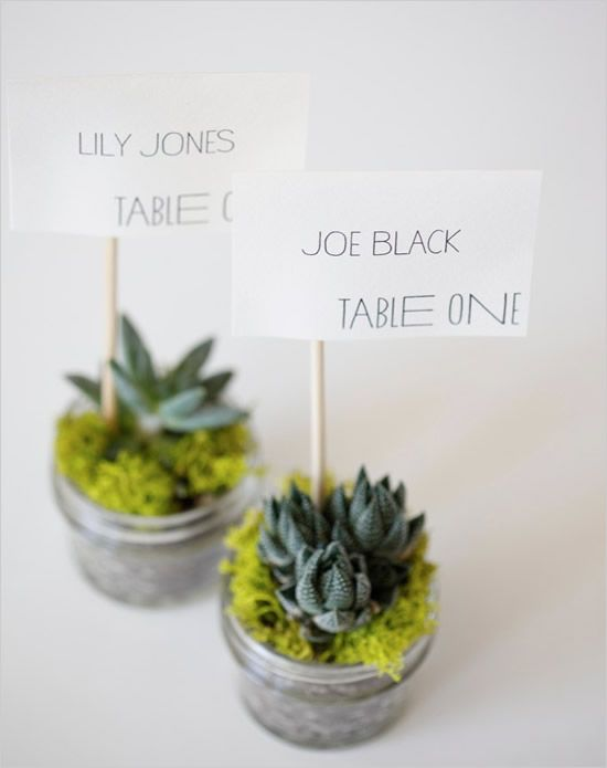 Do it yourself eco friendly succulent place cards 2316434 weddbook do it yourself eco friendly succulent place cards solutioingenieria Images