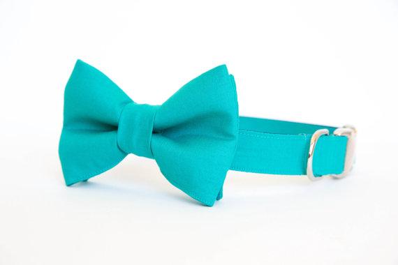 Свадьба - Dog Bow Tie Collar - Teal Gentleman's Collar