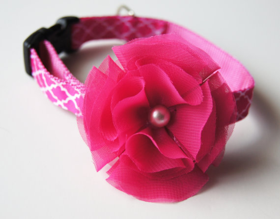 Свадьба - Pink and Pearl Floral Dog Collar Attachment